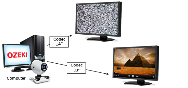 voip video codec support